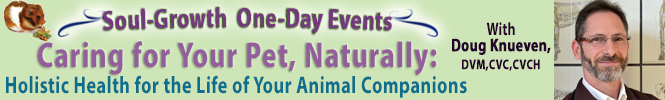 Holistic Health for Pets banner