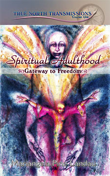 Spiritual Adulthood cover